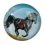 Horse Small round magnet