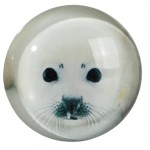 baby seal Small round magnet