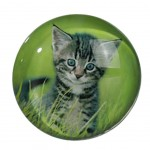 Cat Small round magnet