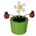 Solar Powered Beetle and flower Dancing