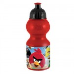Angry Birds training bottle