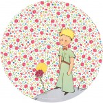 The little prince Melamine plate