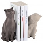 Stop cat-shaped books