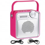 Transportable and rechargeable radio