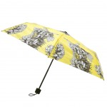 Gorse Umbrella - Flower Fairies